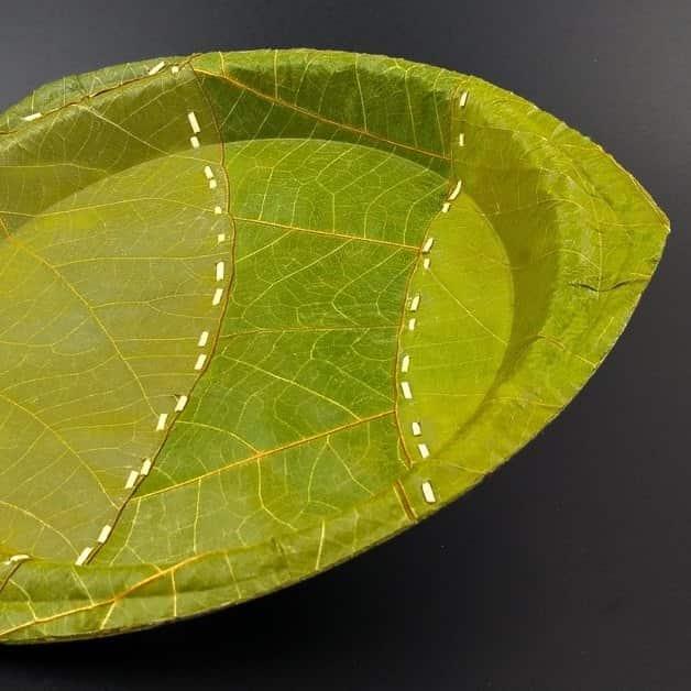 I am like you, I am different – Leaf – ein innovatives Konzept