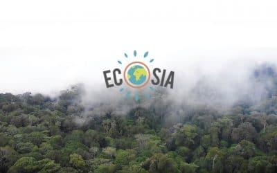 Ecosia – das umweltfreundlichere Google?