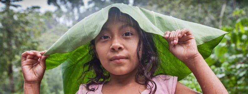 Warum Fairtrade?